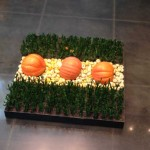 Pumpkins and Cacti for Fall at Northpark Center