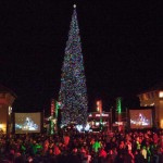 America's Tallest Fresh-Cut Christmas Tree at Outlets at Anthem in Phoenix
