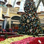 Winter Wonderland at the Bellagio