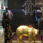 Store Windows in Dallas: Roberto Cavalli